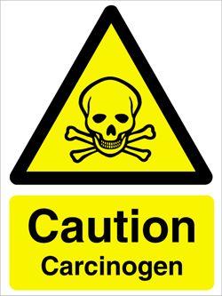 Tamoxifen Carcinogen